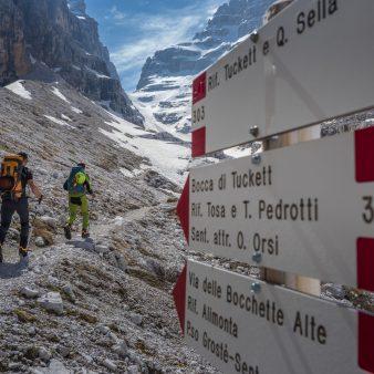 Trekking Trail Nordic stokken